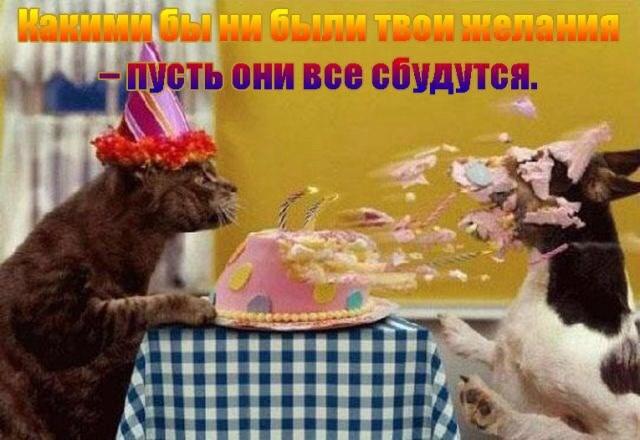 születésnapját kívánja ismerősének)